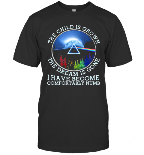 The Child Is Grown The Dream Is Gone I Have Become Comfortably Numb Pink Floyd Lgbt shirt Classic Men's